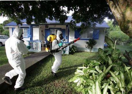 رش المبيدات بالرياض