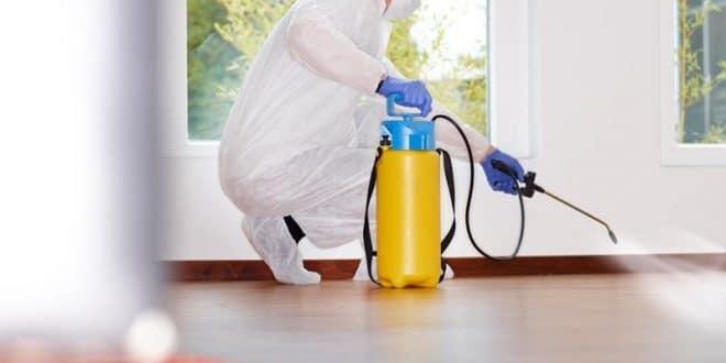 شركة مكافحة بق الفراش بجدة 0580002467 اقوي المبيدات – شركة الشهاب